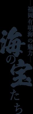 福岡有明海の魅力 海の宝たち
